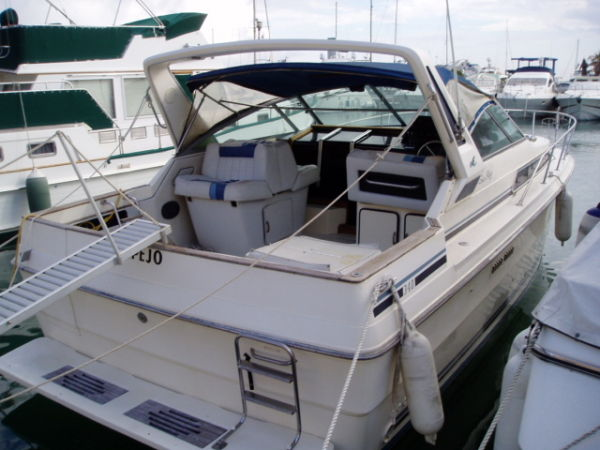 Sea Ray 34 Express Cruiser Photo 1