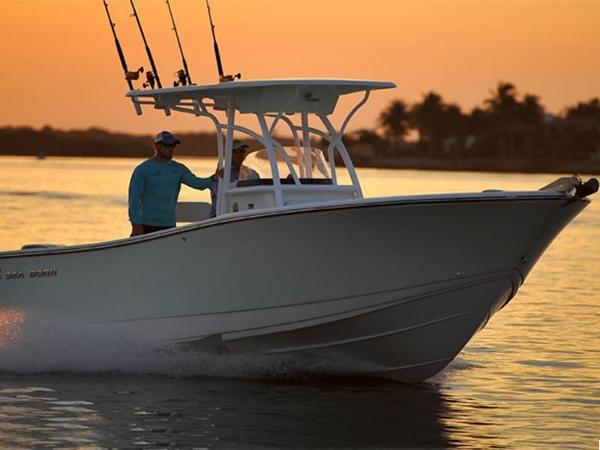 Sea Born SX239 Offshore