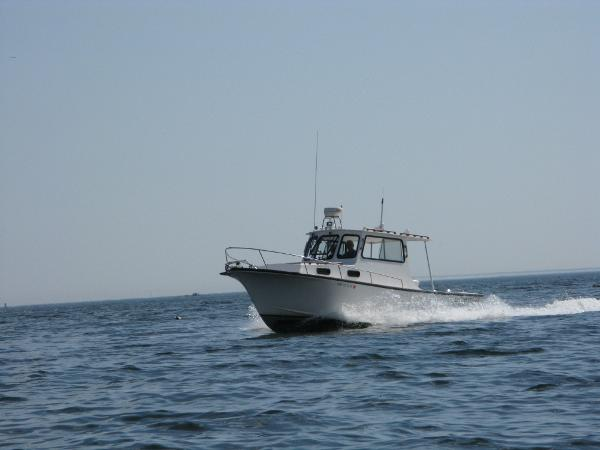 Eastern Downeast Cruiser