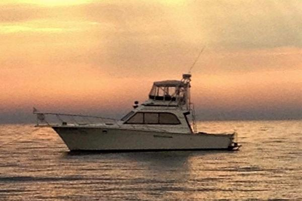 Egg Harbor Convertible Sportfish