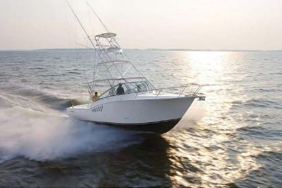 Albemarle 330 Xf Features Image 1
