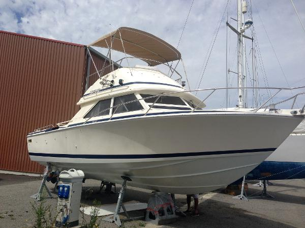 Bertram 28 Flybridge CRUISER juillet 2015 221