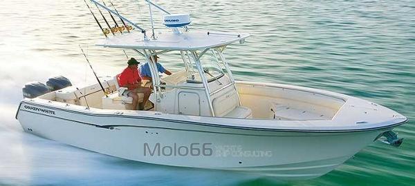 Grady-White 306 Bimini CC Grady White 306
