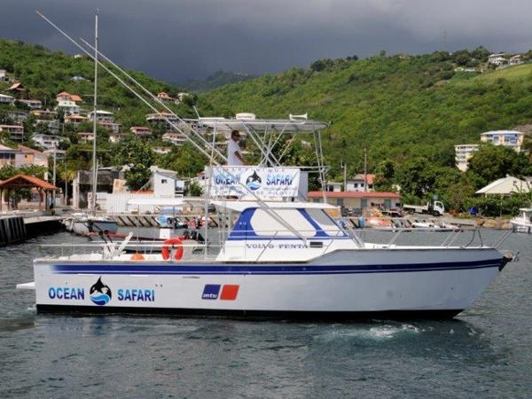 Martinique MULTICAP CARAIBES 40