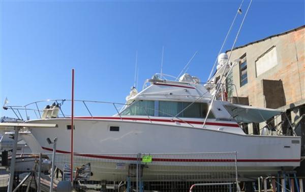 Bertram Yacht 38 NONAME IMG_2384