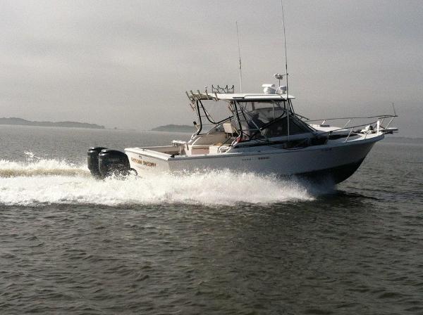 Blackfin 29-2 Combi