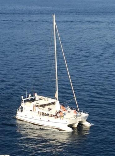 Custom Trimaran de Voyage en Alu