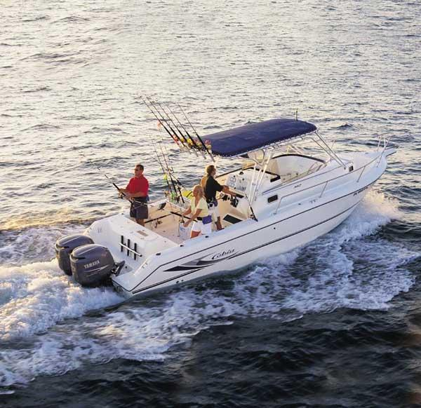 Cobia 312 Sport Cabin Manufacturer Provided Image