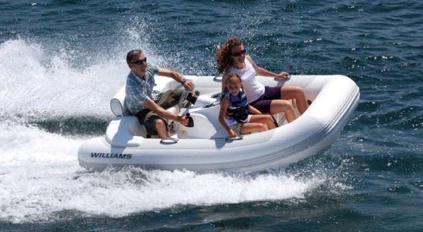 Williams Turbojet 285 Manufacturer Provided Image: Williams Performance Tenders Turbojet 285