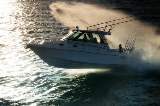 Everglades Boats 320ex