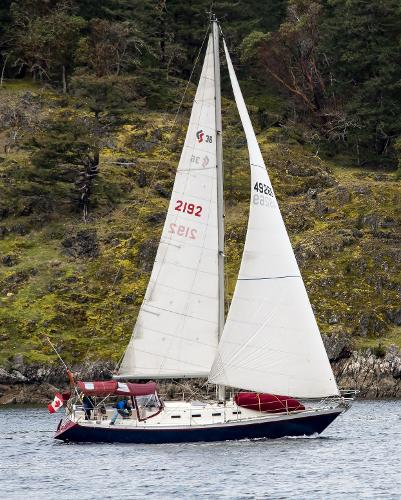 Canadian Sailcraft Traditional