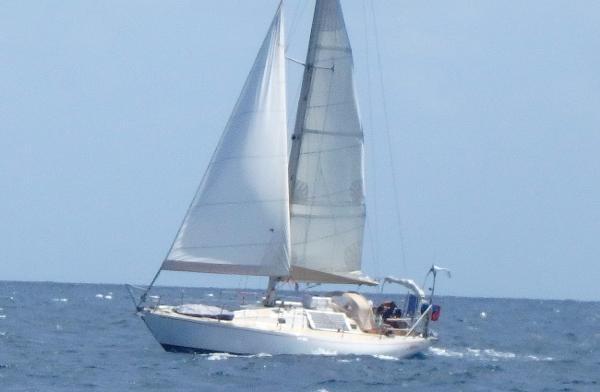 Carter Offshore Antibes Carter 37