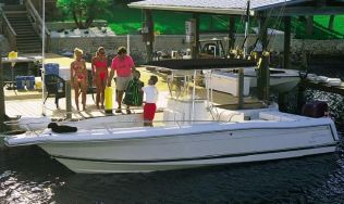 Manufacturer Provided Image: 250 Tarpon
