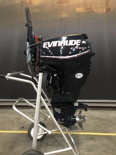 Evinrude E25DTEAAA