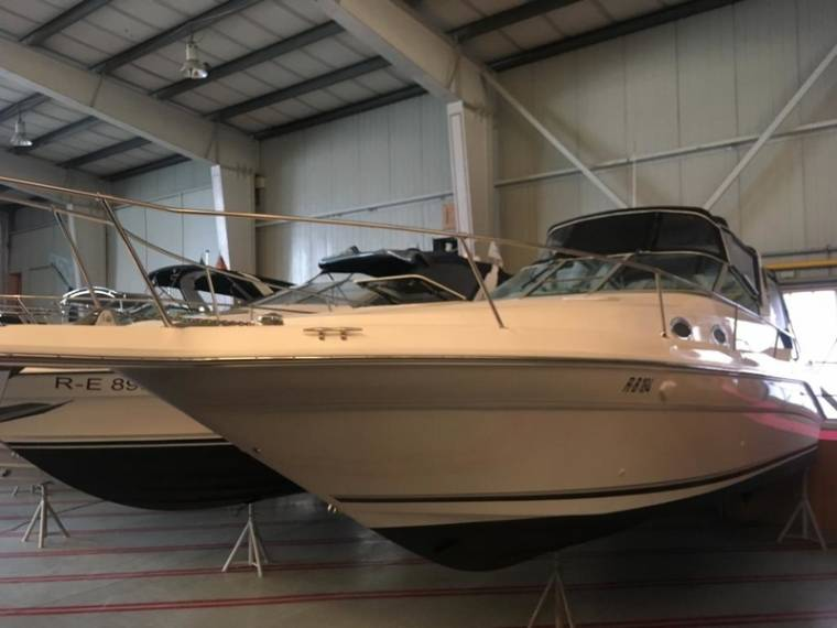 Sea Ray Sea Ray 290 DA Sundancer Motorboot