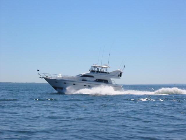 Neptunus 55 Motor Yacht profile.JPG