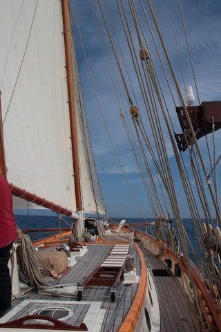 Shpountz 44-40 deck 2