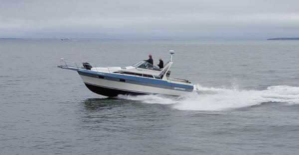 Cruisers 2970 Esprit