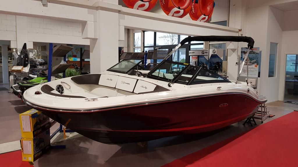 Sea Ray 190 SPX  Boote Pfister Edition