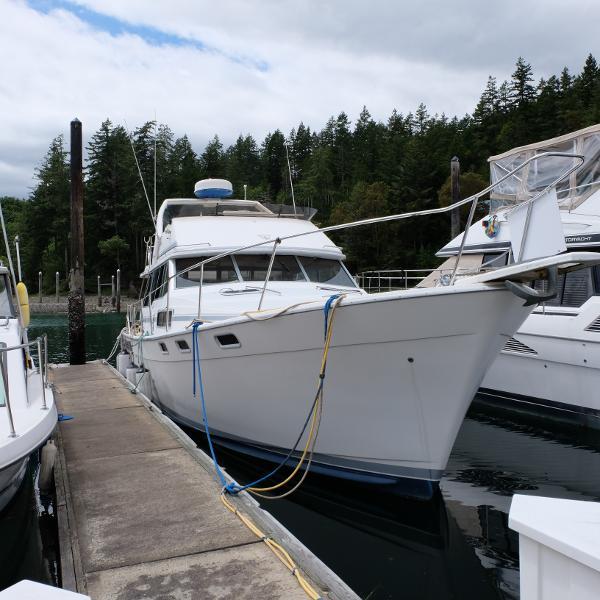 Bayliner 3818 Motoryacht THE BOYS TOY