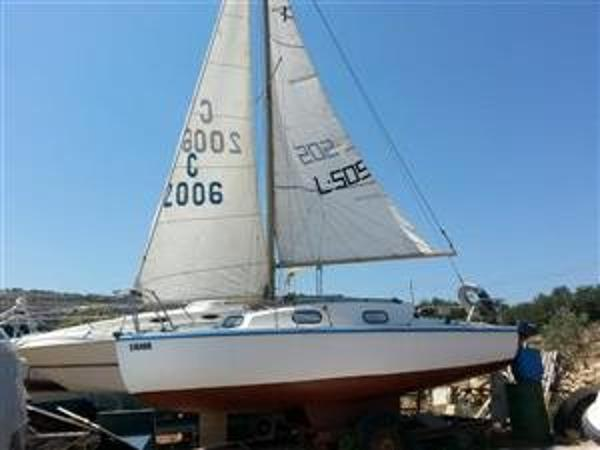 KingFisher 20