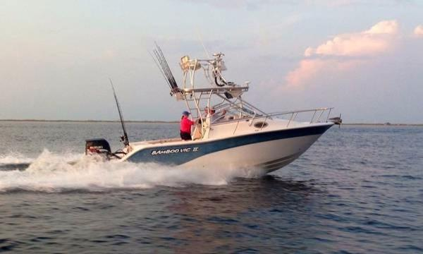 Sea Fox 256 Walkaround Profile