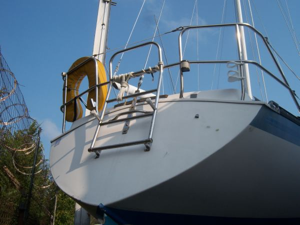Transom & Swim Ladder