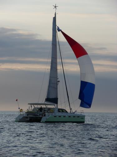 GreenCat 445 Sailing