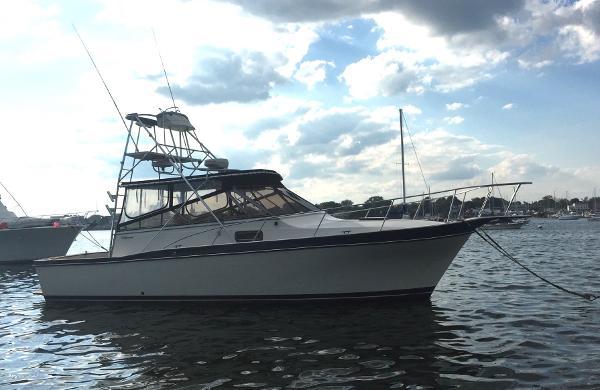 Californian Blackfin, Pusuit Starboard