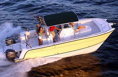 Glacier Bay 3065 Canyon Runner Manufacturer Provided Image