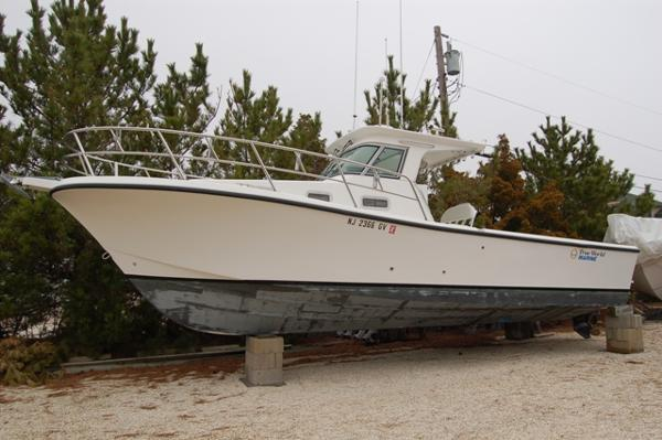 True World Marine 288