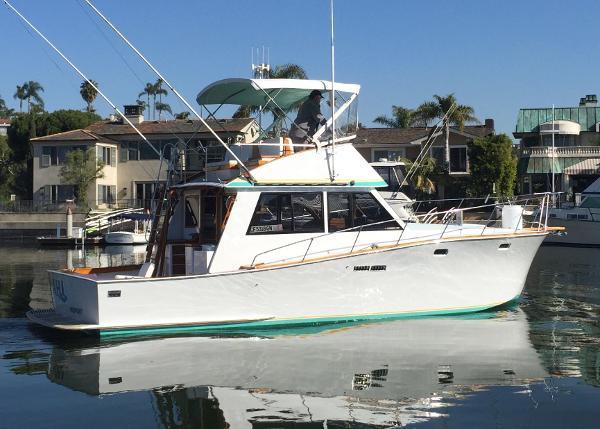 Pacific Bluefin Convertible