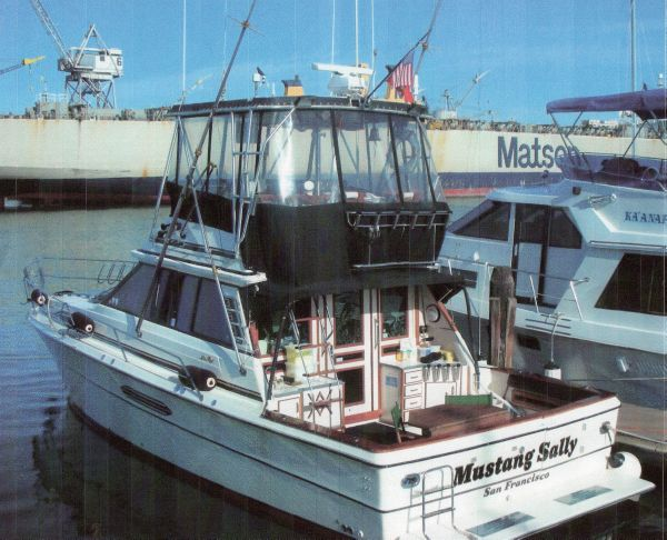 MUSTANG SALLY - SEA RAY 39 - CUSTOM