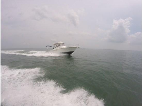 Pursuit 3000 Offshore