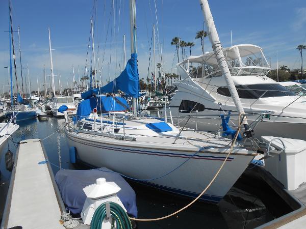 "Catalina 36 ""Rippin"""