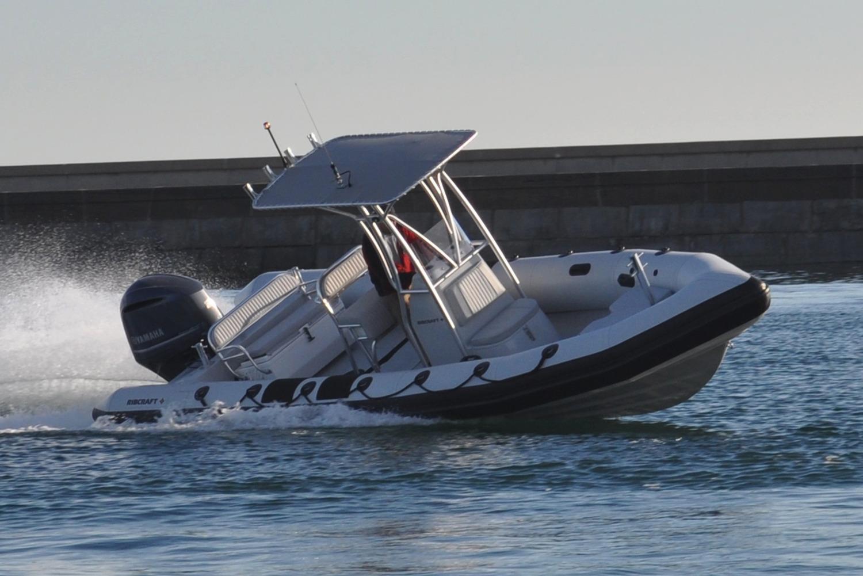 Ribcraft Boat image