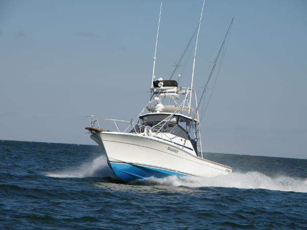 Topaz Boats for Sale