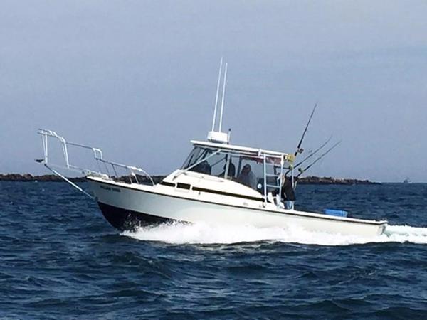 Bertram 31 Bahia Mar Profile