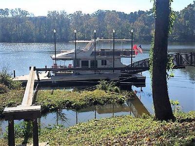 Sunstar 16 X 42 Houseboat Profile 1