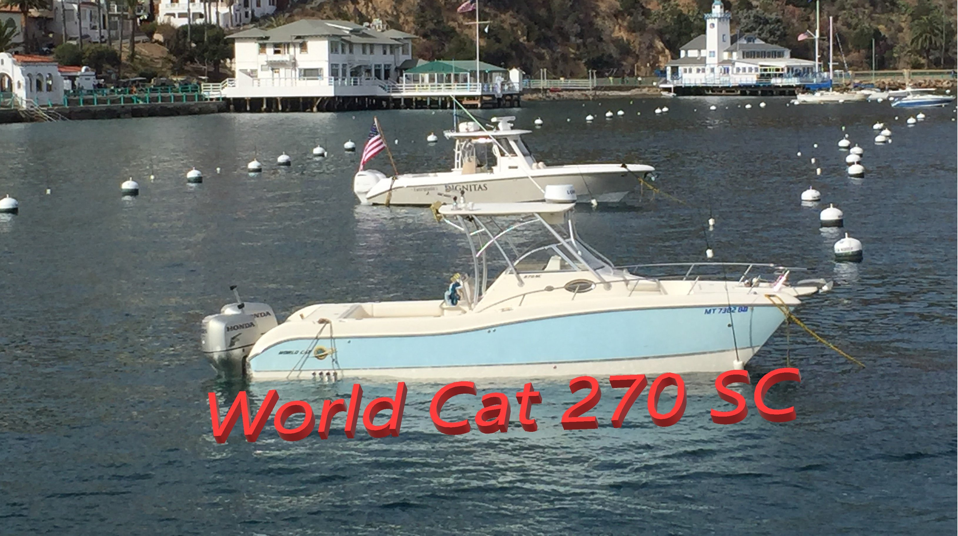 World Cat 270 SC