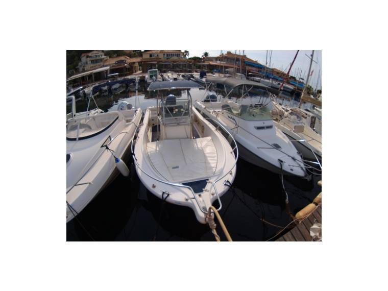 White Shark WHITE SHARK KELT SA WHITE SHARK 205 HY45206