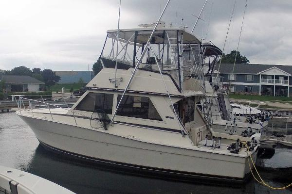 Viking 35 Convertible Profile