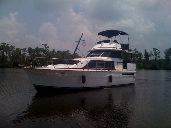 Bertram 42 Motor Yacht Photo 1