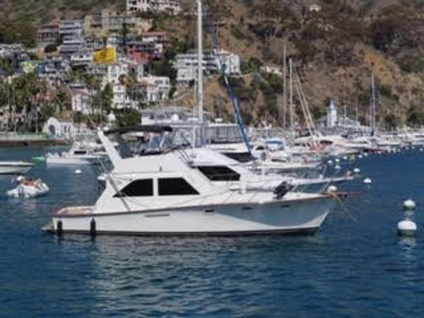 Ocean Super Sport On the hook in Catalina