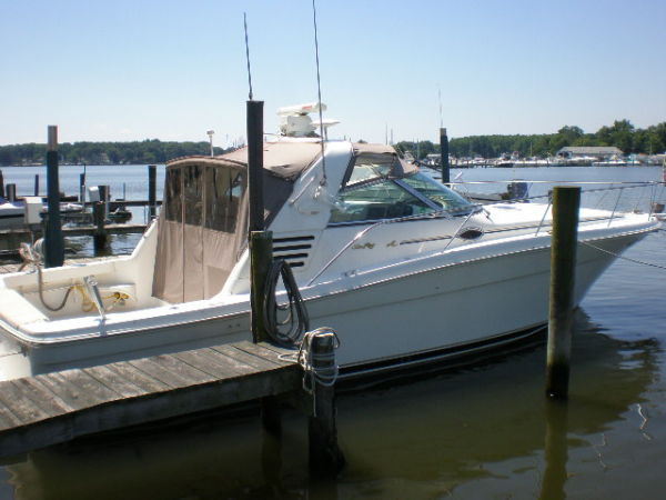 Sea Ray 370 Express Cruiser Photo 1