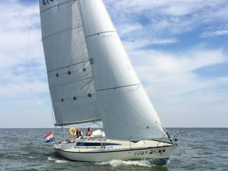 X - Yachts 342