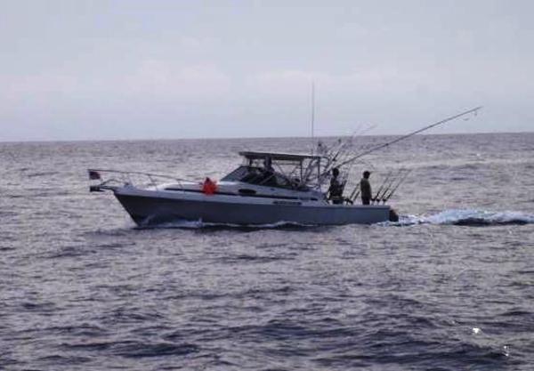 Blackfin Combi