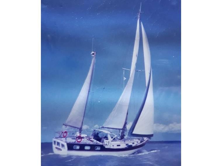 Trintella Yachts Trintella IV