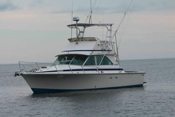 Bertram 35 Sport Fish