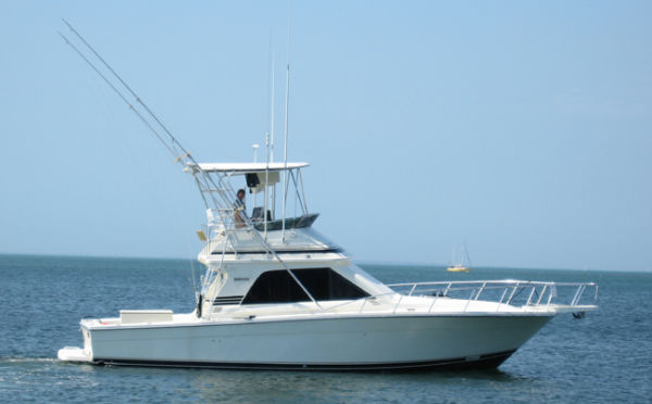 Blackfin 38 Convertible Photo 1